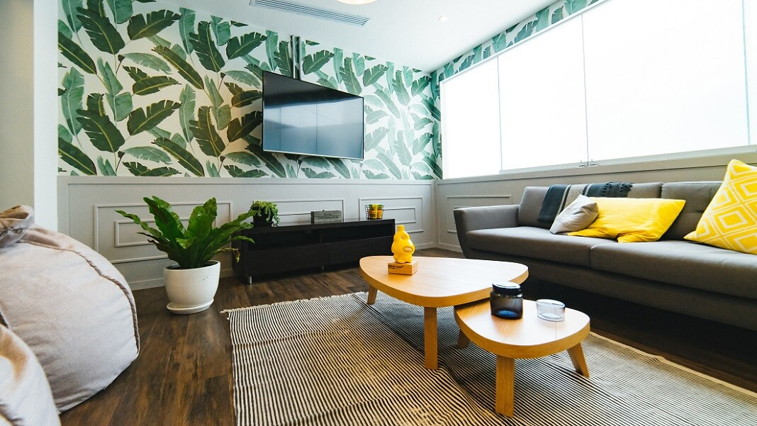 Modern living room with wallpaper and plants