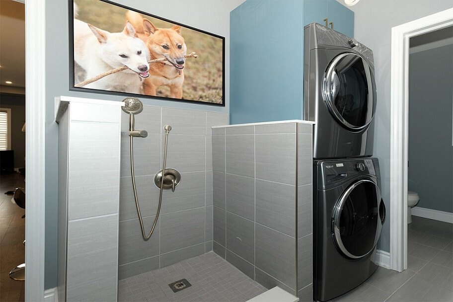 Functional laundry room with shower for dogs